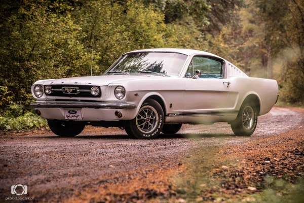 1966 Ford Mustang Fastback ����, ����, ����, ����������