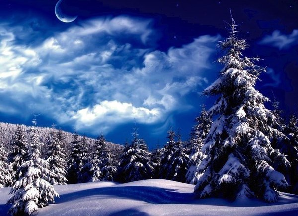 Winter Wallpapers Backgrounds Images  Best winter