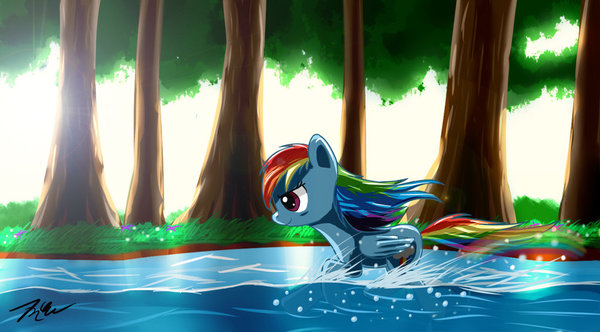 Rainbow Dash in Forest my little pony, ponyart, rainbow dash