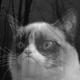 Аватар пользователя NjoyDEV