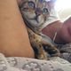 Аватар пользователя kiska15iriska