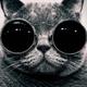 Аватар пользователя sundew61