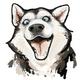 Аватар пользователя krotokot