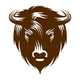 Аватар пользователя bizon36