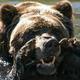 Аватар пользователя Bolshoi200