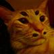 Аватар пользователя 3L0DEY