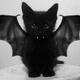 Аватар пользователя dev187