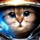 Аватар пользователя MissTriss