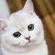 Аватар пользователя Mariya31