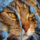 Аватар пользователя MINAVA