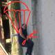 Аватар пользователя ImOlegovich