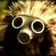 Аватар пользователя Tankist1942