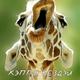 Аватар пользователя Tubli