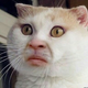 Аватар пользователя armagedonzrx