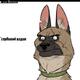 Аватар пользователя dragov98