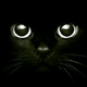 Аватар пользователя Alisa15896