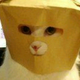 Аватар пользователя Liaden
