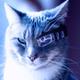 Аватар пользователя 4EJL0BEK