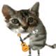 Аватар пользователя MiKaSa555