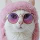 Аватар пользователя ZNikaO