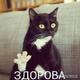 Аватар пользователя atamirael