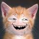 Аватар пользователя Naryck