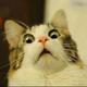 Аватар пользователя kostya0