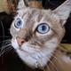 Аватар пользователя ivan19530