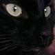 Аватар пользователя kether95