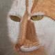 Аватар пользователя MadRockatansky