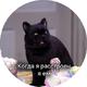 Аватар пользователя Feidjie