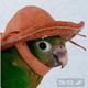 Аватар пользователя YEGG0R