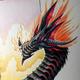 Аватар пользователя drak0shich