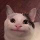 Аватар пользователя TaTor