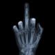 Аватар пользователя sergadmin