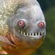 Аватар пользователя skryaga