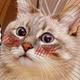 Аватар пользователя sunmi