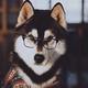 Аватар пользователя Alexandria29