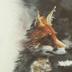 Foxcap
