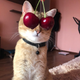 Аватар пользователя kygyiyk