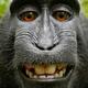 Аватар пользователя boobooin