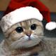 Аватар пользователя 4eloveKBoyan