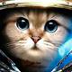 Аватар пользователя pekobu4