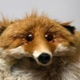 Аватар пользователя mrybakov