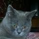 Аватар пользователя LSVPiter