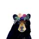 Аватар пользователя evgesha117