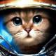 Аватар пользователя adept032