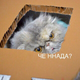 Аватар пользователя Akaihana86