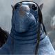 Аватар пользователя FruktEsheTot