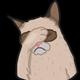Аватар пользователя SankX